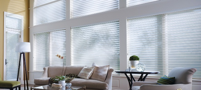 blinds nyc Amerishades