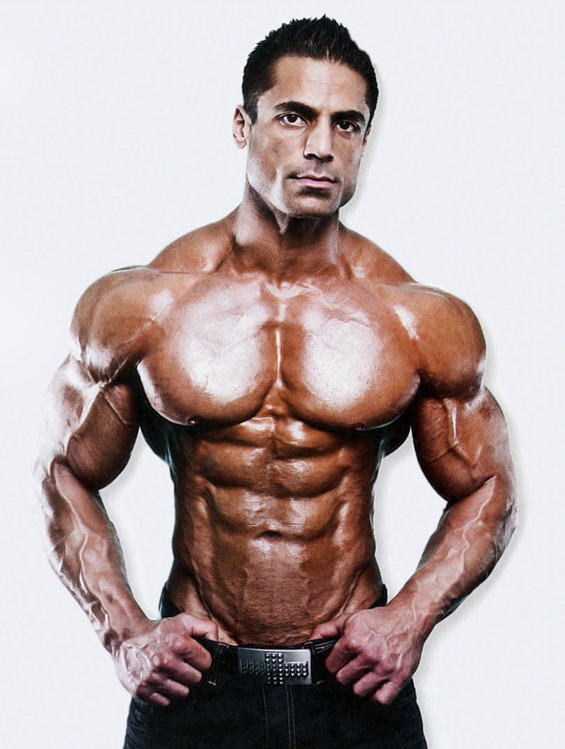 bodybuild schema