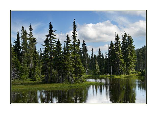 Strathcona Provincial Park Landscapes