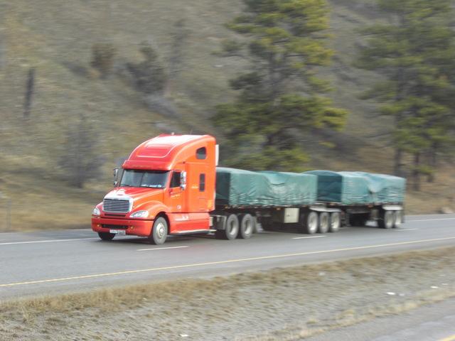 CIMG9083 Trucks