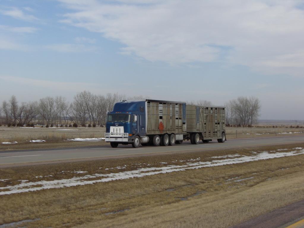 CIMG9217 - Trucks