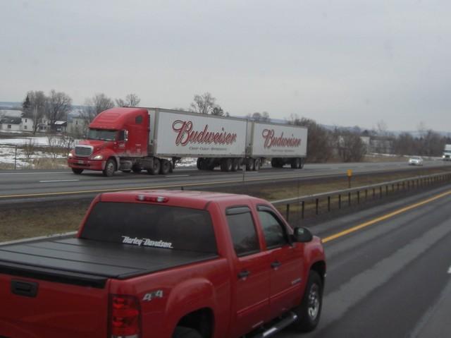 CIMG9258 Trucks