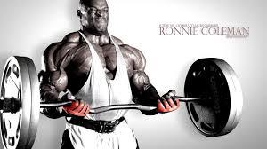 muscle hd  http://www.revommerce.com/muscle-hd/