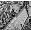 Notre Dame roof - France