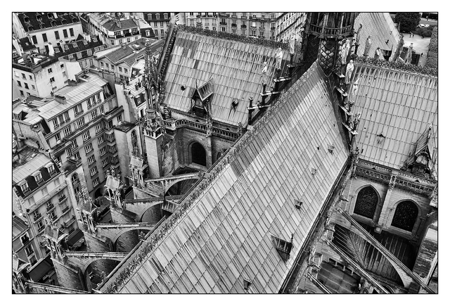 Notre Dame roof France
