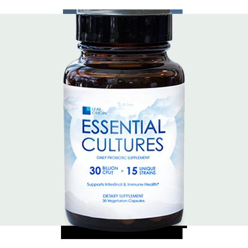 Essential Cultures Picture Box
