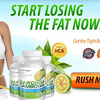 Garcinia-Cambogia-G3000-Review - Get Slim And Shaped Figure ...