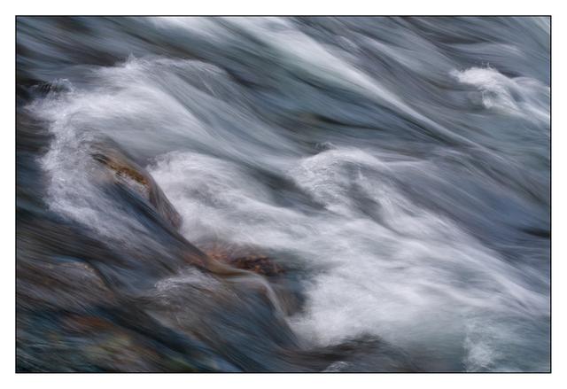 Puntledge Park 2015 02 Nature Images