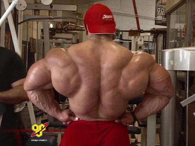 4 http://musclebuildingproducts.info/alpha-fuel-hd/