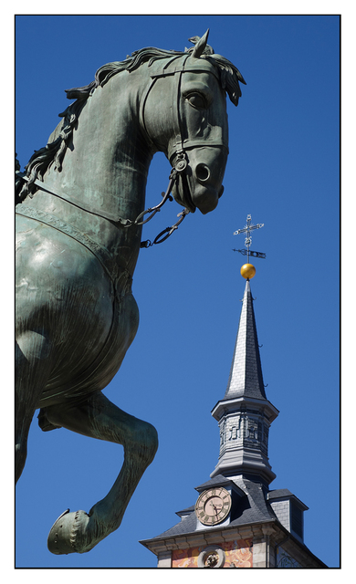 Plaza Mayor Horse Spain