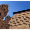 Salamanca shells - Spain