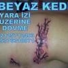 İstanbulun En İyi Dövme Salonu - İstanbulun En İyi Dövme Salonu