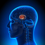 article codev-2014-05-18-ba... - The Power of the Adolescent Brain