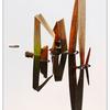 Hawk Glen Reeds 2016 01 - Nature Images