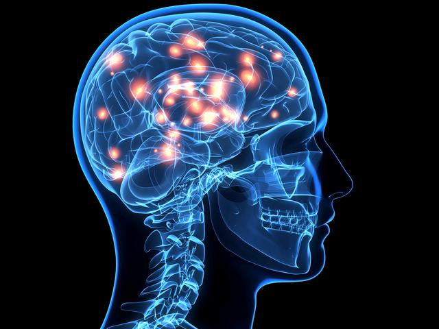 web-brain-getty-c-DONTUSEAGAIN1 Picture Box