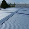 Re Roofing Auckland - PLATINUM ROOFING LTD