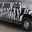Zebra Print Hummer Limo - Picture Box
