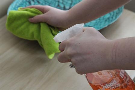 maid service winnipeg MintyMaids