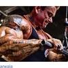 http://naturalsmaleenhancement.com/muscletronic/