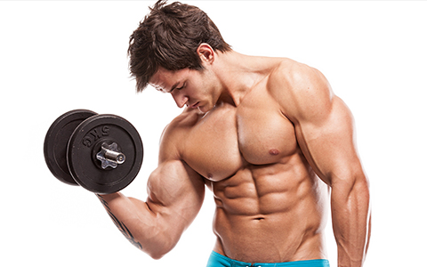 Top Easiest To Help Build Muscle And Burn Fat Picture Box