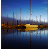 Comox Dock 2016 2 - Comox Valley