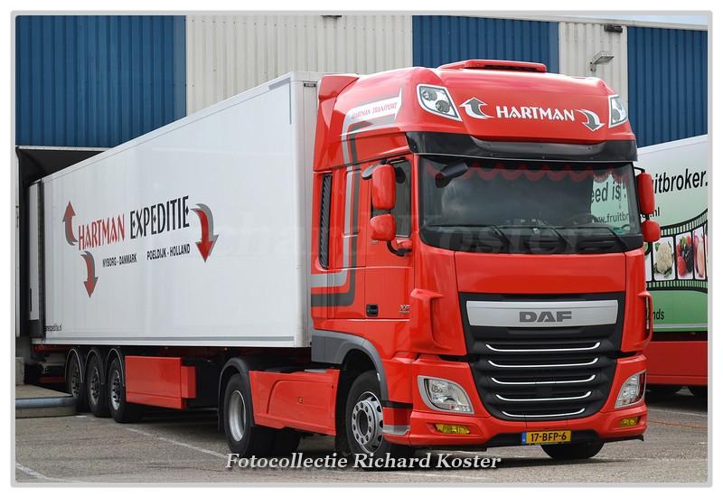 Hartman 17-BFP-6-BorderMaker - Richard