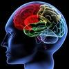 brain - Boost Mind Power Quickly