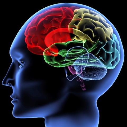 brain Boost Mind Power Quickly