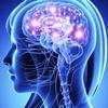 neuroregeneration-wishful-t... - Cognifocus