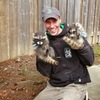 SWAT Derick raccoon removal - Raccoon Removal Toronto