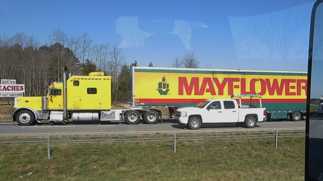 IMG 0807 Trucks