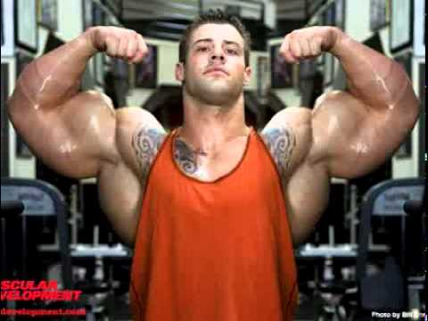 5 http://musclebuildingproducts.info/n33-nitric-oxide/
