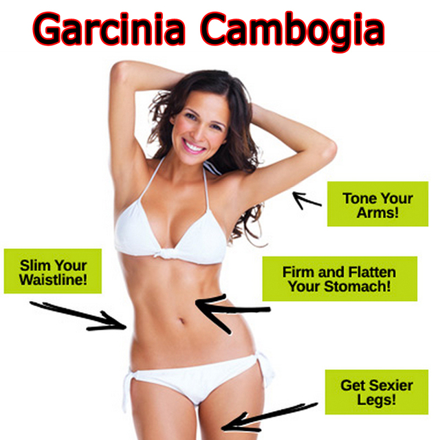 2-bottles-abc-pure-garcinia-cambogia-extracts-slim Remove Extra Fat  With Flawless Garcinia Cambogia