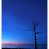 Kin Beach Stars 001 - Landscapes
