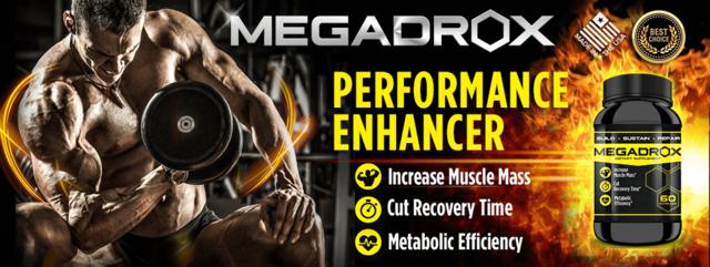 MegaDrox-1 Megadrox