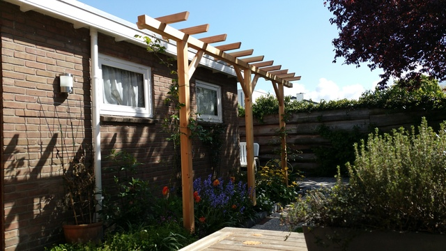 Pergola DIY Projects