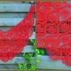 rode sjaal - Mijn zelf gemaakte sjaals