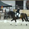 k6 - Iberische Paard-dag