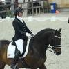 k8 - Iberische Paard-dag