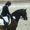 k9 - Iberische Paard-dag