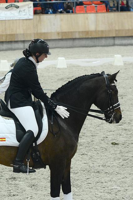 k9 Iberische Paard-dag