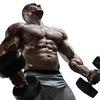 26  SupremeX Muscle img sec... - SupremeX Muscle