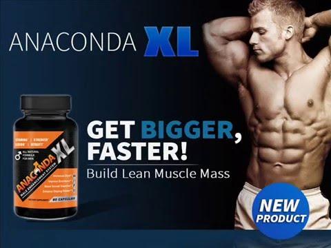 Anaconda XL Anaconda XL