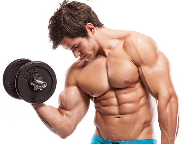 156Muscle Building Picture Box