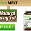 http://www.healthinnovgroup - http://www.healthinnovgroup.com/garcinia-melt-reviews-or-side-effects/