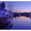 Comox Dock 2016 6 - Panorama Images