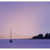 Sailboat Sunset 2016 1 - Comox Valley