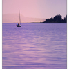 Sailboat Sunset 2016 2 - Comox Valley