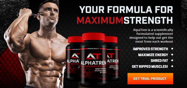 Alphatren1 How Does AlphaTren Work?