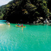 Sightseeing Tours in Auckland - CW Transfers and Tours